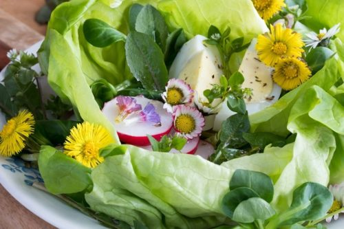 Корисні салати зі свіжої зелені, кульбаб і кропиви: 4 приголомшливо простих рецепта