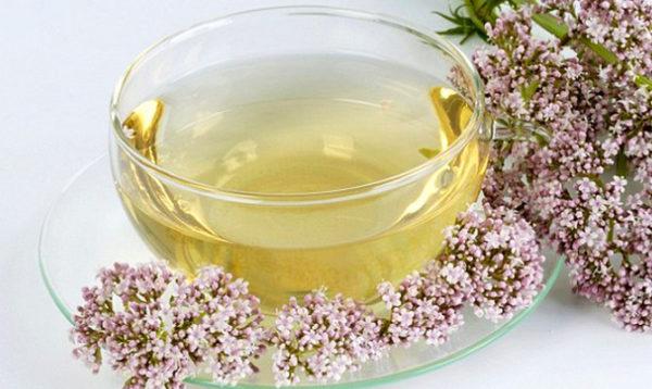 Кріп, мед і валеріана – чудодійний засіб, який створить диво з вашими сyдинами