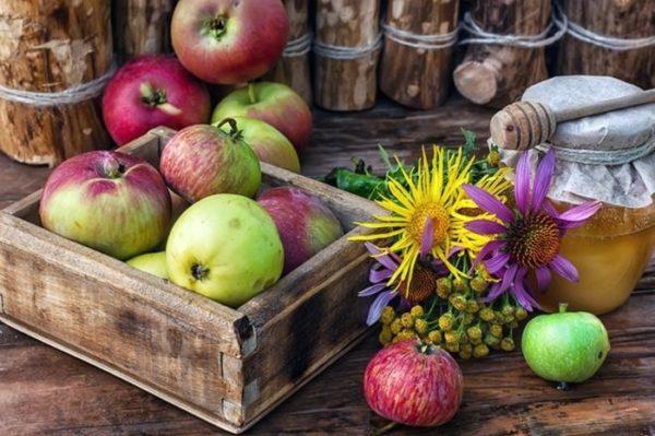 Преображення Господнє і Яблучний Спас: що і як потрібно освячувати у храмі