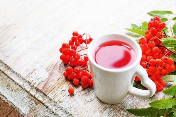 Цілющі властивості горобини можуть допомогти в лікуванні багатьох захворювань: осінь – саме час укріпити імунітет